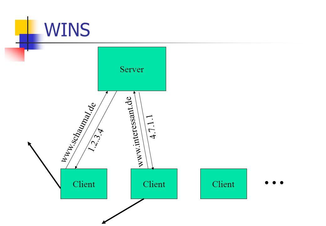 WINS Server Client www.schaumal.de 1.2.3.4 www.interessant.de 4.7.1.1...