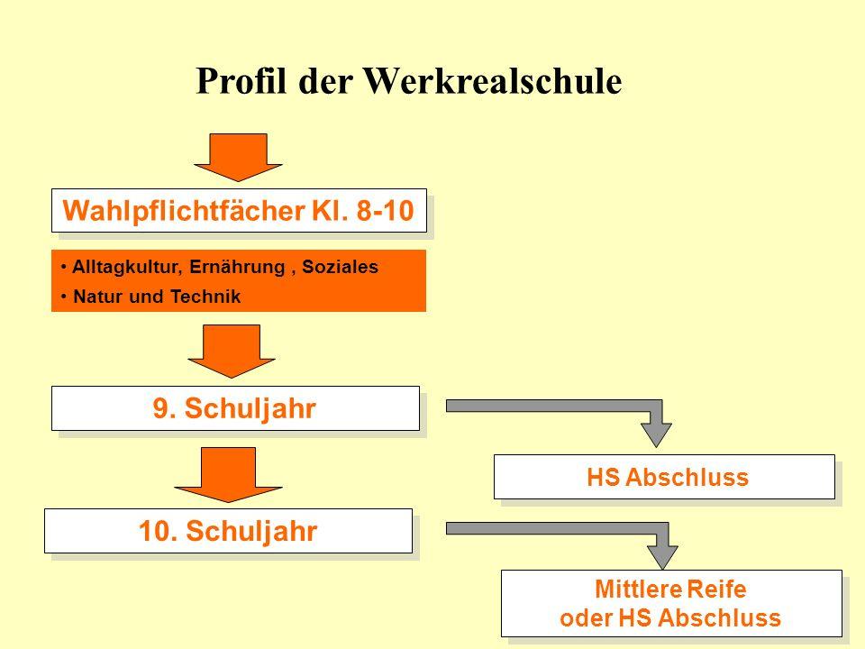 Projekte/Angebote Fitness und Krafttraining