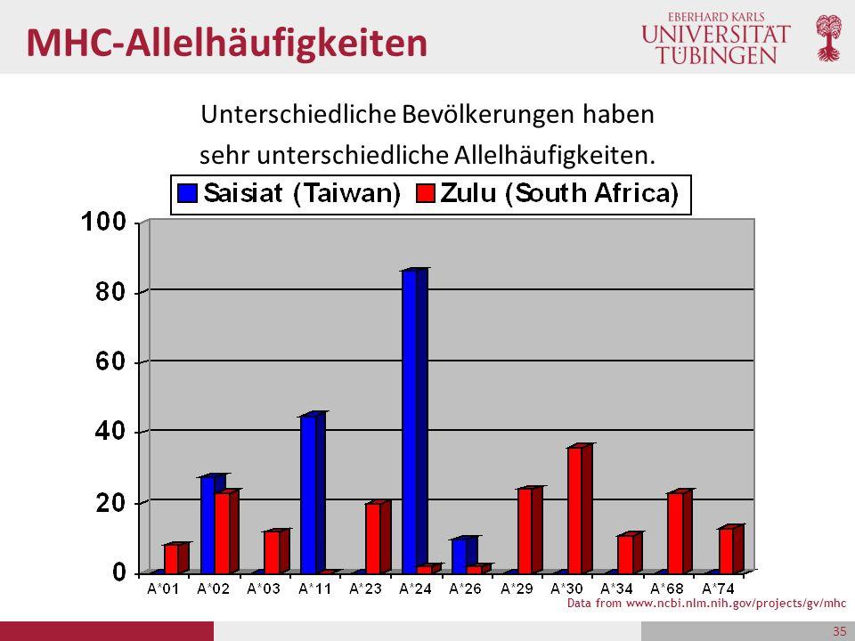 MHC-Allelhäufigkeiten Unterschiedliche Bevölkerungen haben sehr unterschiedliche Allelhäufigkeiten. Data from www.ncbi.nlm.nih.gov/projects/gv/mhc 35