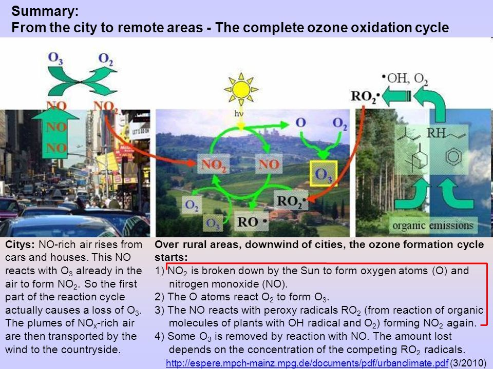 Summary: From the city to remote areas - The complete ozone oxidation cycle http://espere.mpch-mainz.mpg.de/documents/pdf/urbanclimate.pdfhttp://espere.mpch-mainz.mpg.de/documents/pdf/urbanclimate.pdf (3/2010) Over rural areas, downwind of cities, the ozone formation cycle starts: 1) NO 2 is broken down by the Sun to form oxygen atoms (O) and nitrogen monoxide (NO).