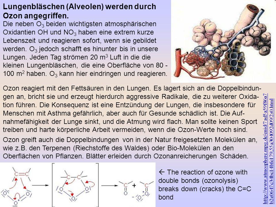 http://www.atmosphere.mpg.de/enid/7ad5a59f86a7 b2e0647c34bc14bfe179,55a304092d09/2s0.html Ozon reagiert mit den Fettsäuren in den Lungen. Es lagert si