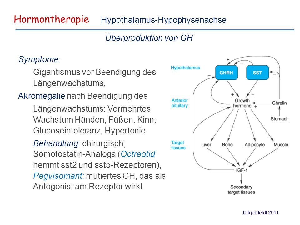Hormontherapie Hilgenfeldt 2011 Hypothalamus-Hypophysenachse Überproduktion von GH Symptome: Gigantismus vor Beendigung des Längenwachstums, Akromegalie nach Beendigung des Längenwachstums: Vermehrtes Wachstum Händen, Füßen, Kinn; Glucoseintoleranz, Hypertonie Behandlung: chirurgisch; Somotostatin-Analoga (Octreotid hemmt sst2 und sst5-Rezeptoren), Pegvisomant: mutiertes GH, das als Antogonist am Rezeptor wirkt