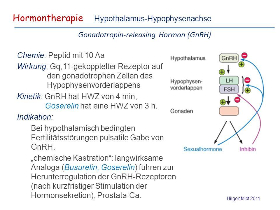 Hormontherapie Hilgenfeldt 2011 Hypothalamus-Hypophysenachse Gonadotropin-releasing Hormon (GnRH) Chemie: Peptid mit 10 Aa Wirkung: Gq,11-gekopptelter Rezeptor auf den gonadotrophen Zellen des Hypophysenvorderlappens Kinetik: GnRH hat HWZ von 4 min, Goserelin hat eine HWZ von 3 h.
