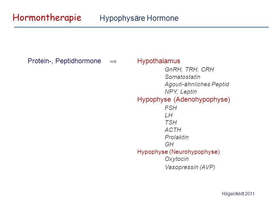 Hormontherapie Hilgenfeldt 2011 Protein-, Peptidhormone  Hypothalamus GnRH, TRH, CRH Somatostatin Agouti-ähnliches Peptid NPY, Leptin Hypophyse (Adenohypophyse) FSH LH TSH ACTH Prolaktin GH Hypophyse (Neurohypophyse) Oxytocin Vasopressin (AVP) Hypophysäre Hormone