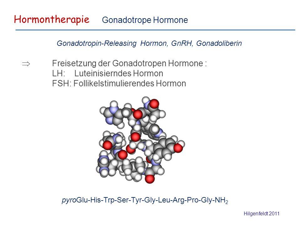 Hormontherapie Hilgenfeldt 2011 Gonadotrope Hormone pyroGlu-His-Trp-Ser-Tyr-Gly-Leu-Arg-Pro-Gly-NH 2  Freisetzung der Gonadotropen Hormone : LH: Luteinisierndes Hormon FSH: Follikelstimulierendes Hormon Gonadotropin-Releasing Hormon, GnRH, Gonadoliberin