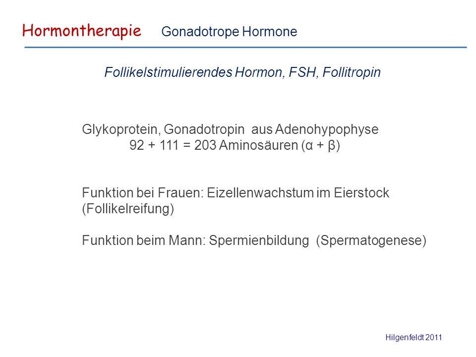 Hormontherapie Hilgenfeldt 2011 Gonadotrope Hormone Glykoprotein, Gonadotropin aus Adenohypophyse 92 + 111 = 203 Aminosäuren (α + β) Funktion bei Frauen: Eizellenwachstum im Eierstock (Follikelreifung) Funktion beim Mann: Spermienbildung (Spermatogenese) Follikelstimulierendes Hormon, FSH, Follitropin