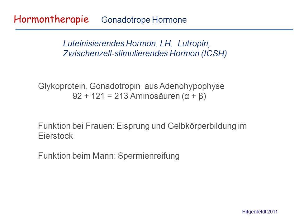 Hormontherapie Hilgenfeldt 2011 Gonadotrope Hormone Glykoprotein, Gonadotropin aus Adenohypophyse 92 + 121 = 213 Aminosäuren (α + β) Funktion bei Frauen: Eisprung und Gelbkörperbildung im Eierstock Funktion beim Mann: Spermienreifung Luteinisierendes Hormon, LH, Lutropin, Zwischenzell-stimulierendes Hormon (ICSH)