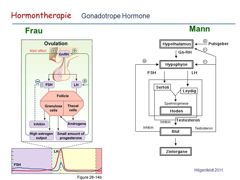 Hormontherapie Hilgenfeldt 2011 Gonadotrope Hormone Frau Mann