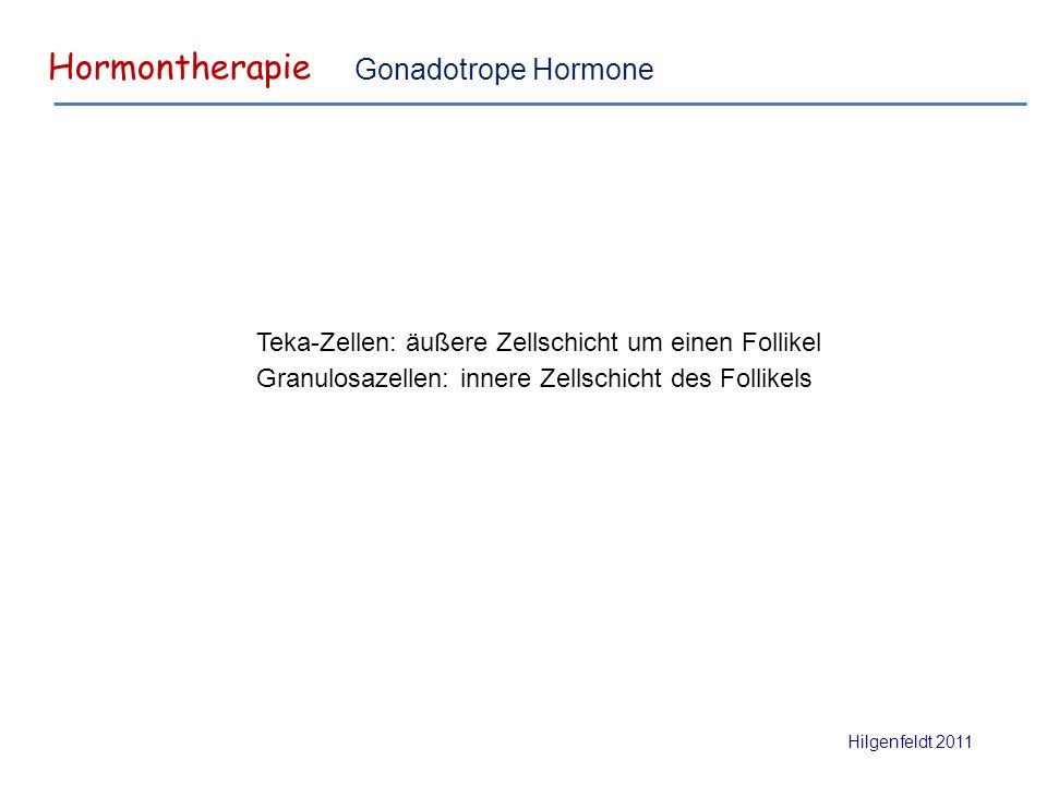 Hormontherapie Hilgenfeldt 2011 Gonadotrope Hormone Teka-Zellen: äußere Zellschicht um einen Follikel Granulosazellen: innere Zellschicht des Follikels