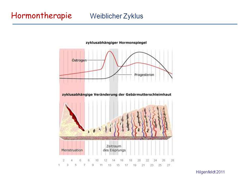 Hormontherapie Hilgenfeldt 2011 Weiblicher Zyklus