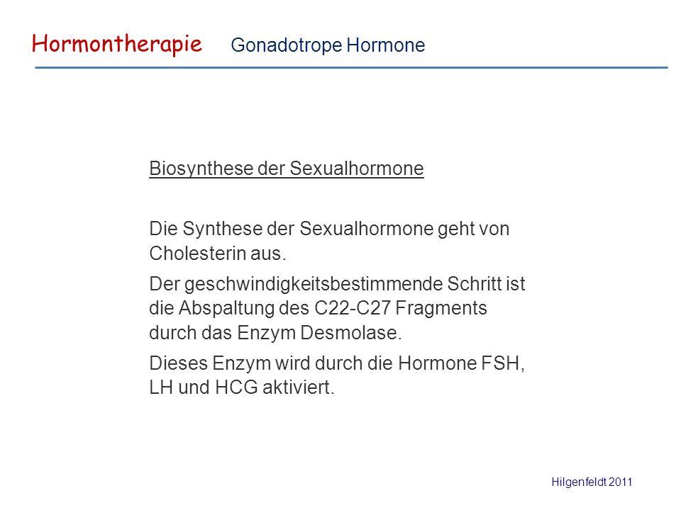 Hormontherapie Hilgenfeldt 2011 Gonadotrope Hormone Biosynthese der Sexualhormone Die Synthese der Sexualhormone geht von Cholesterin aus.
