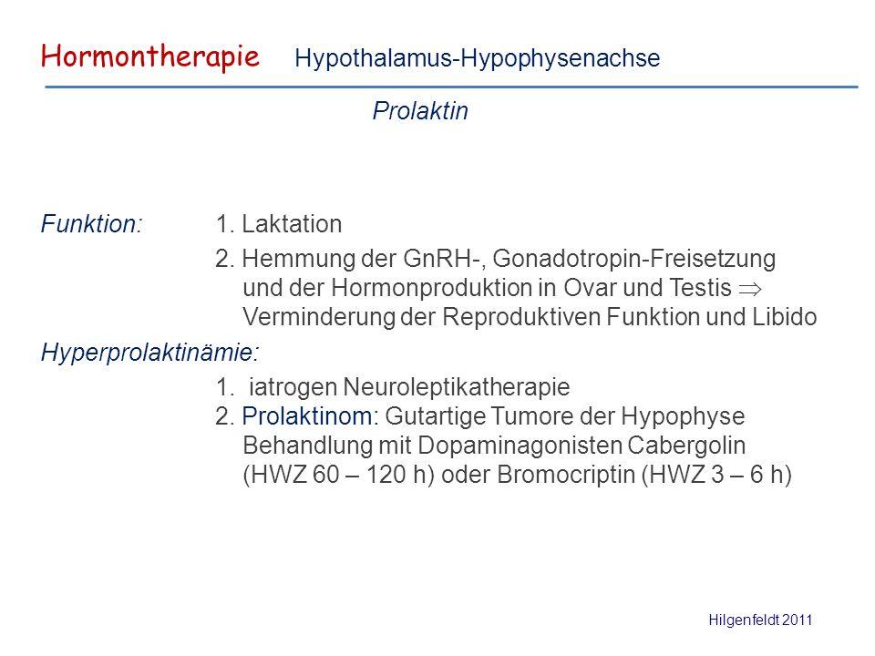 Gemütlich Hypophyse Funktion Und Hormone Bilder - Menschliche ...