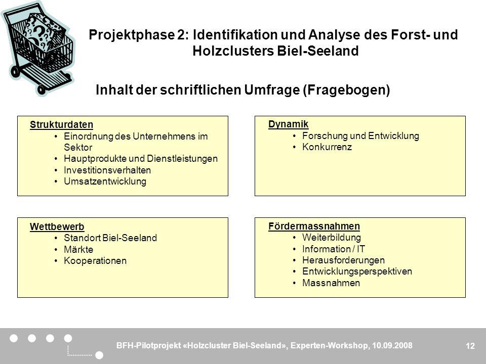 BFH-Pilotprojekt «Holzcluster Biel-Seeland», Experten-Workshop, 10.09.2008 12 Inhalt der schriftlichen Umfrage (Fragebogen) Strukturdaten Einordnung d