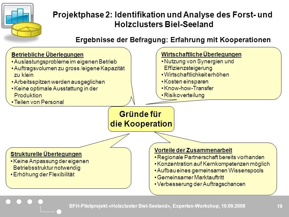 BFH-Pilotprojekt «Holzcluster Biel-Seeland», Experten-Workshop, 10.09.2008 19 Gründe für die Kooperation Wirtschaftliche Überlegungen Nutzung von Syne