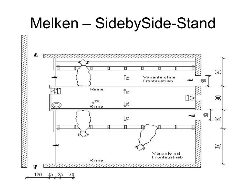 Melken – SidebySide-Stand