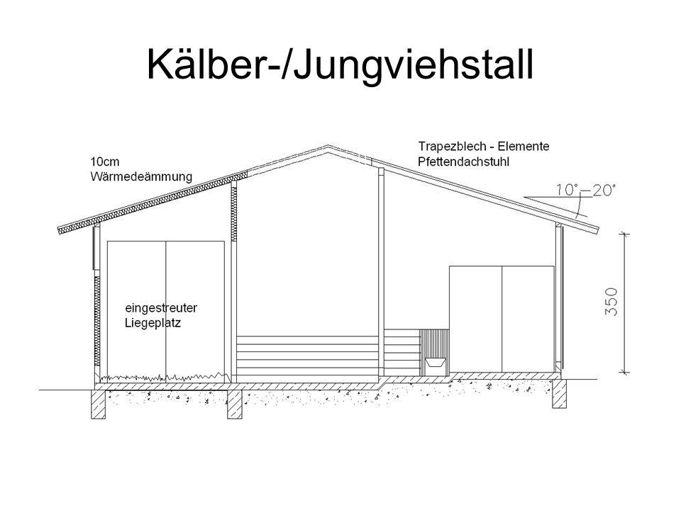 Kälber-/Jungviehstall