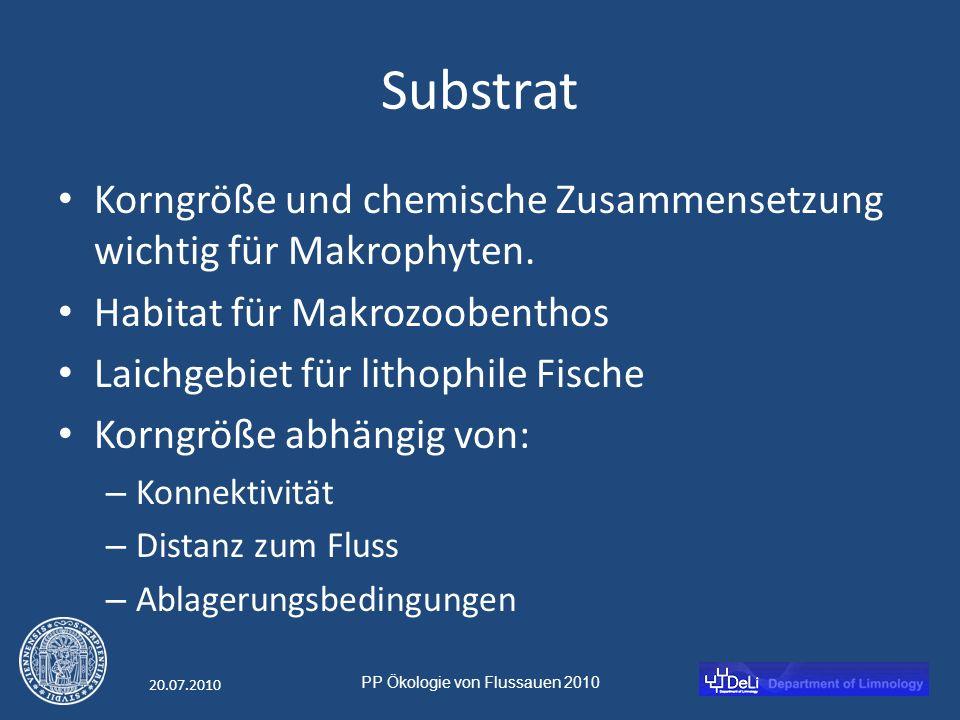 PP Ökologie von Flussauen 2010 20.07.2010 Substrat Korngröße und chemische Zusammensetzung wichtig für Makrophyten.