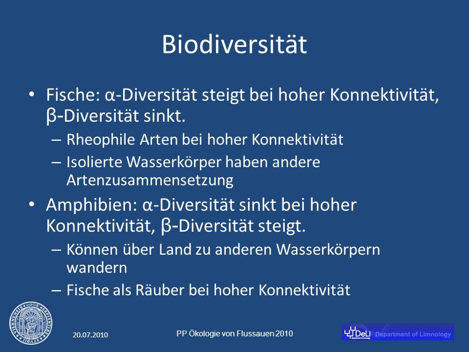 PP Ökologie von Flussauen 2010 20.07.2010 Biodiversität Fische: α-Diversität steigt bei hoher Konnektivität, β- Diversität sinkt.