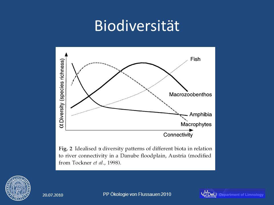 PP Ökologie von Flussauen 2010 20.07.2010 Biodiversität