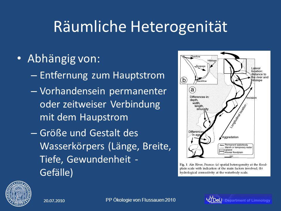 PP Ökologie von Flussauen 2010 20.07.2010 Kurzzeit Dynamik Wasserkörper sind entweder permanent mit dem Fluss verbunden, oder durch natürliche oder künstliche Dämme abgetrennt, die aber unter bestimmten Umständen überflossen werden können.