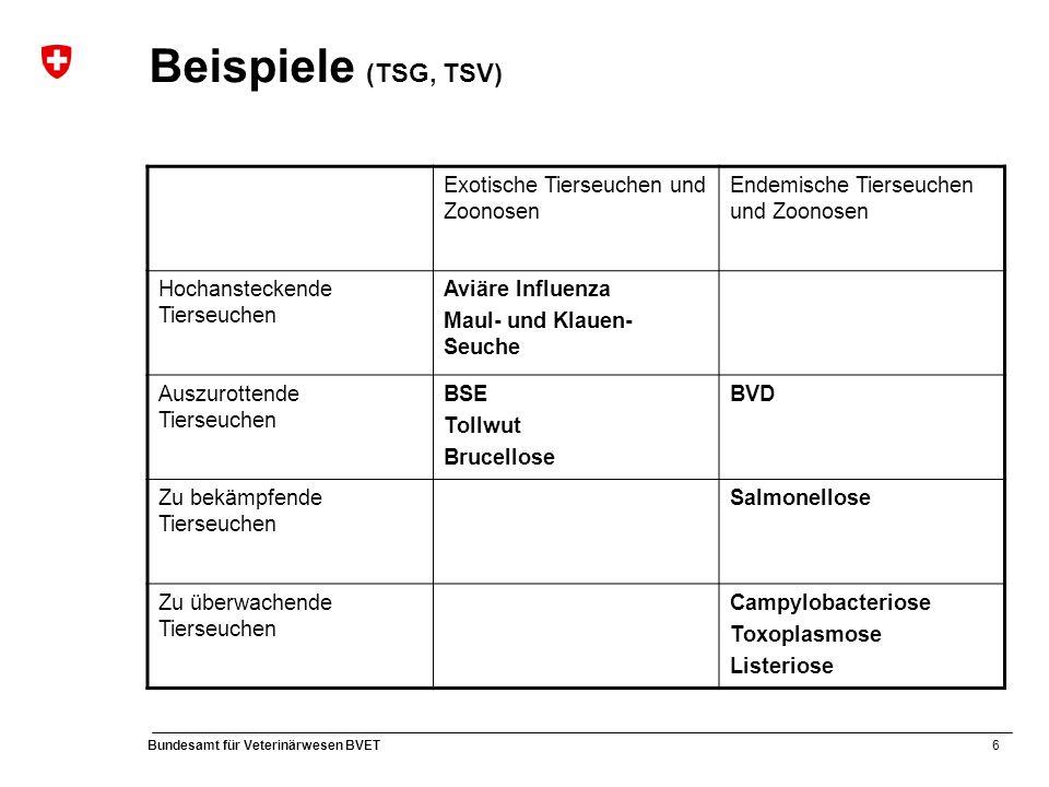 6 Bundesamt für Veterinärwesen BVET Beispiele (TSG, TSV) Exotische Tierseuchen und Zoonosen Endemische Tierseuchen und Zoonosen Hochansteckende Tierseuchen Aviäre Influenza Maul- und Klauen- Seuche Auszurottende Tierseuchen BSE Tollwut Brucellose BVD Zu bekämpfende Tierseuchen Salmonellose Zu überwachende Tierseuchen Campylobacteriose Toxoplasmose Listeriose