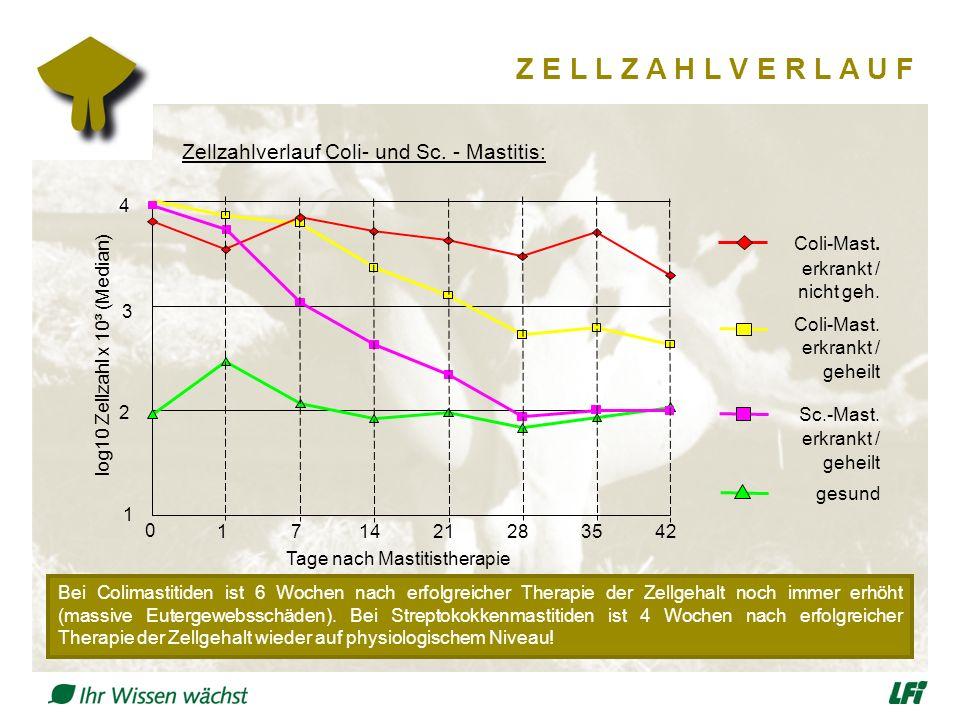 Z E L L Z A H L V E R L A U F gesund erkrankt / geheilt erkrankt / geheilt erkrankt / nicht geh. Coli-Mast. Sc.-Mast. Coli-Mast. Zellzahlverlauf Coli-