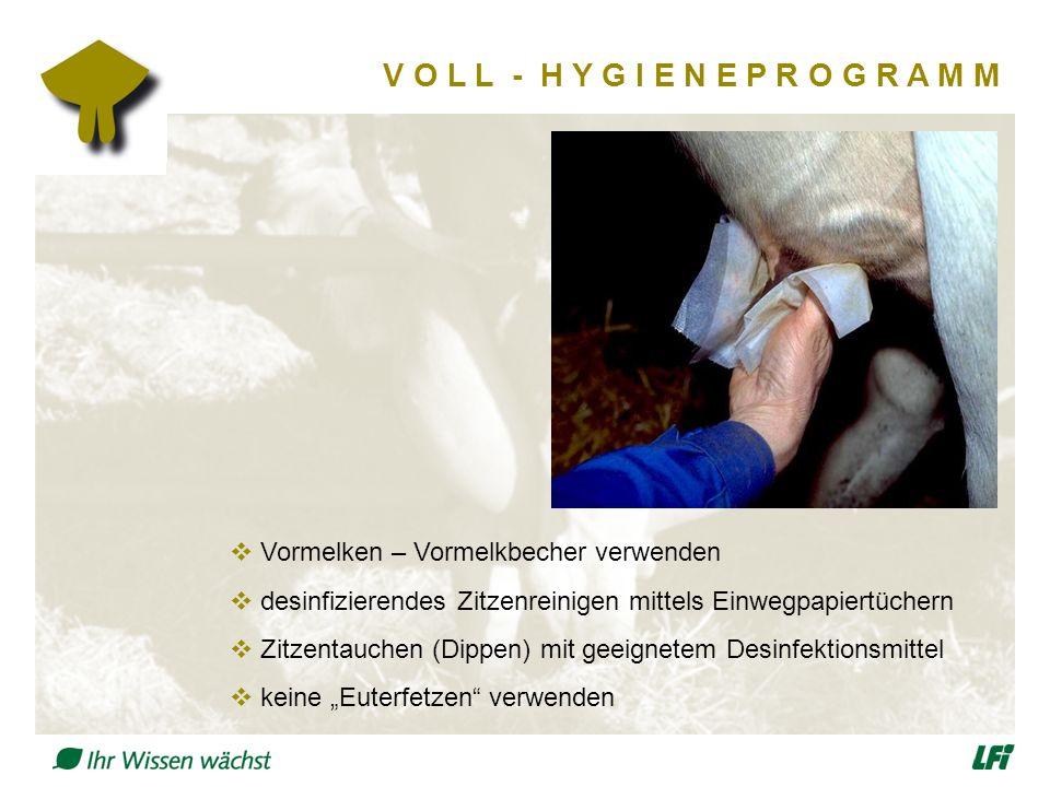 """V O L L - H Y G I E N E P R O G R A M M  Vormelken – Vormelkbecher verwenden  desinfizierendes Zitzenreinigen mittels Einwegpapiertüchern  Zitzentauchen (Dippen) mit geeignetem Desinfektionsmittel  keine """"Euterfetzen verwenden"""