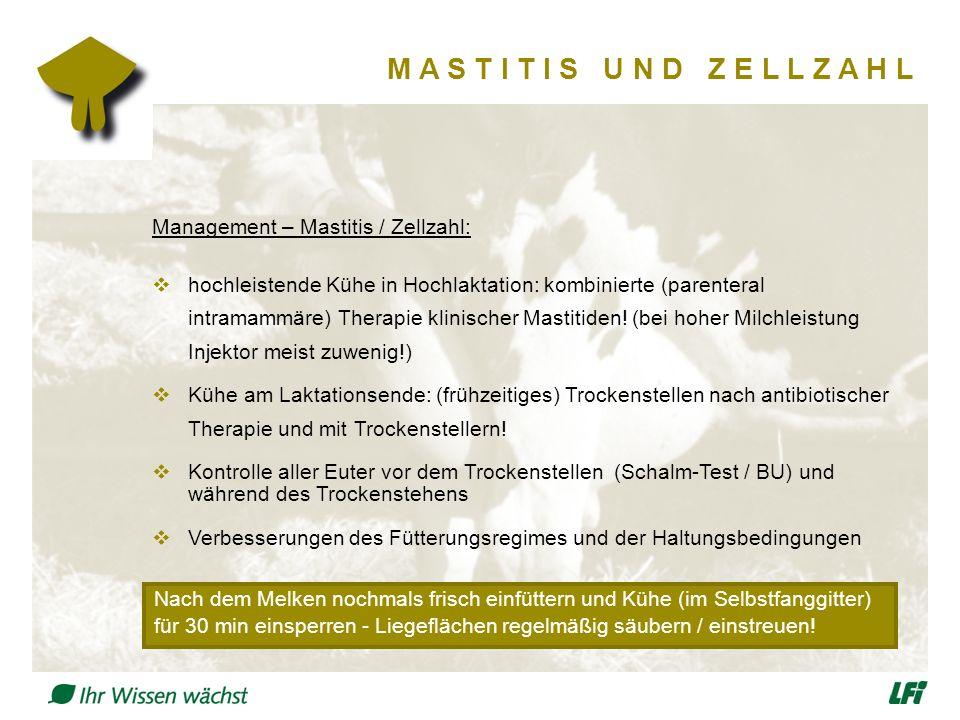 M A S T I T I S U N D Z E L L Z A H L Management – Mastitis / Zellzahl:  hochleistende Kühe in Hochlaktation: kombinierte (parenteral intramammäre) Therapie klinischer Mastitiden.