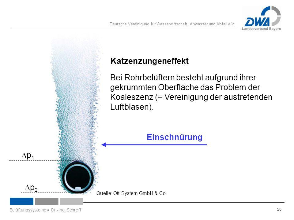 Deutsche Vereinigung für Wasserwirtschaft, Abwasser und Abfall e.V. 20 Katzenzungeneffekt Quelle: Ott System GmbH & Co Belüftungssysteme  Dr.-Ing. Sc