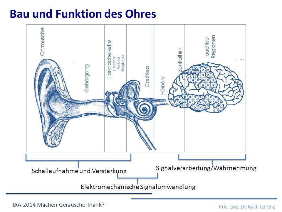 Schallaufnahme und Verstärkung Elektromechanische Signalumwandlung Signalverarbeitung/Wahrnehmung Bau und Funktion des Ohres Priv.