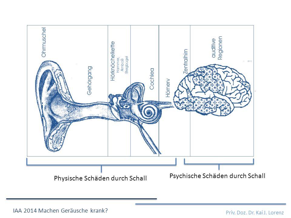 Psychische Schäden durch Schall Physische Schäden durch Schall Priv.