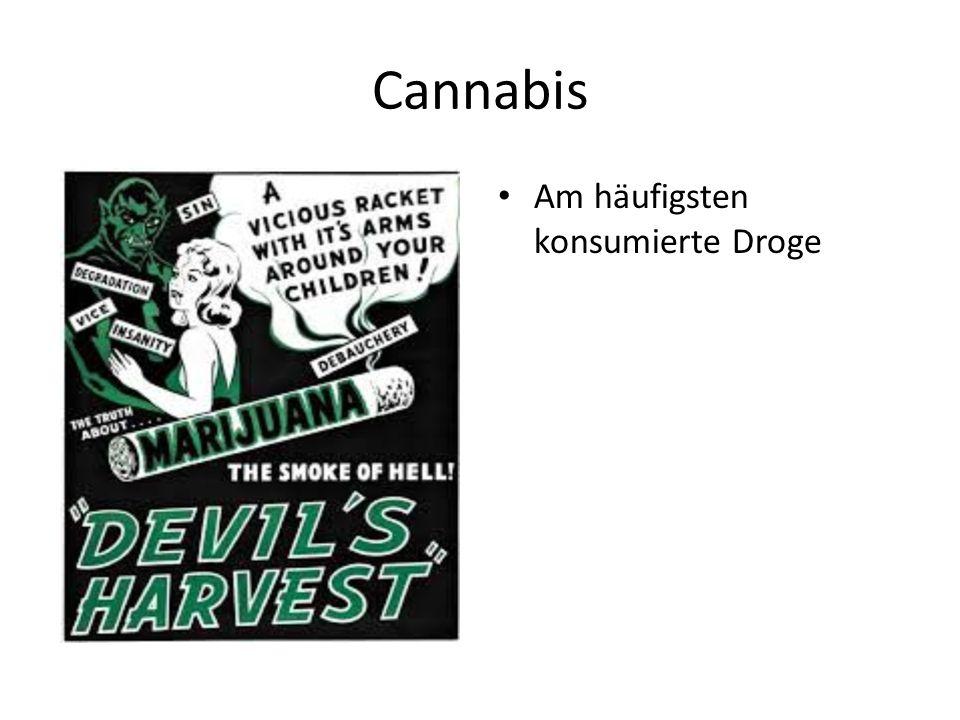 Cannabis Am häufigsten konsumierte Droge