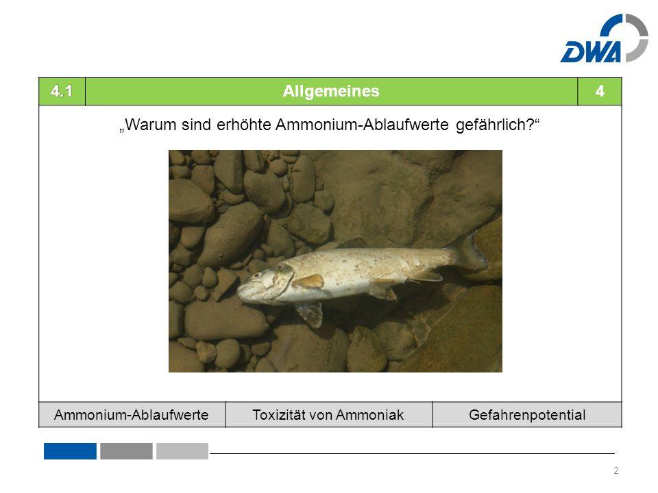 """4.1Allgemeines4 """"Warum sind erhöhte Ammonium-Ablaufwerte gefährlich Ammonium-AblaufwerteToxizität von AmmoniakGefahrenpotential 2"""