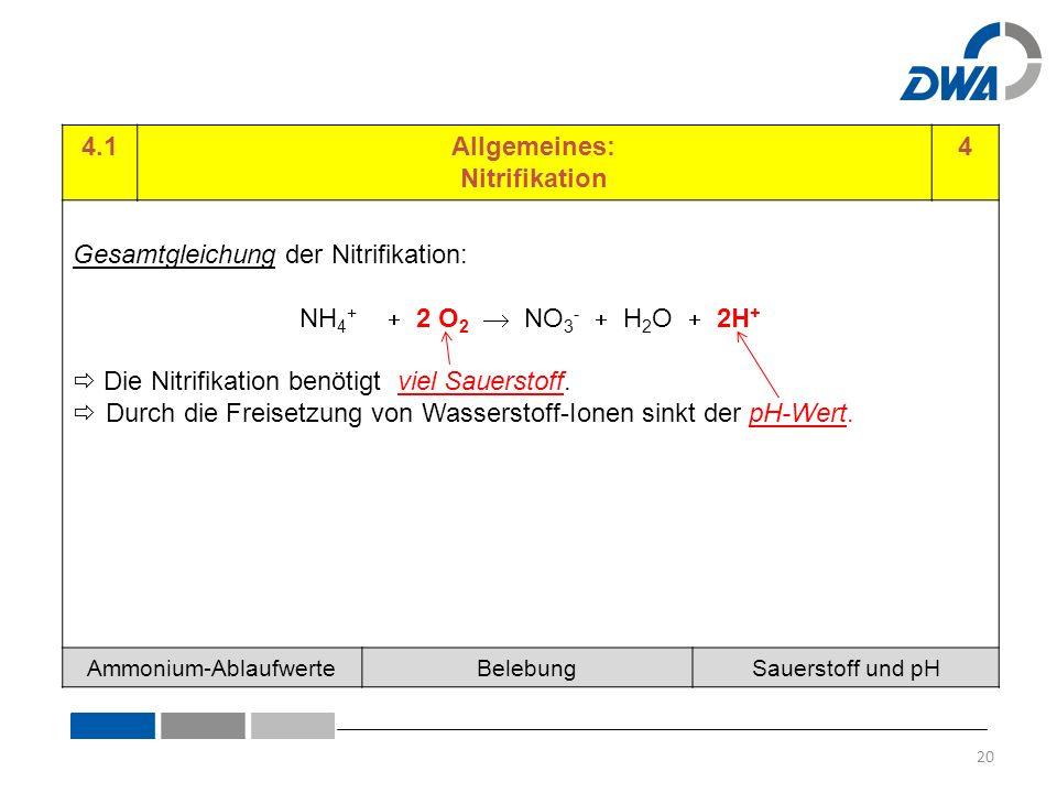 4.1Allgemeines: Nitrifikation 4 Gesamtgleichung der Nitrifikation: NH 4 +  2 O 2  NO 3 -  H 2 O  2H +  Die Nitrifikation benötigt viel Sauerstoff.