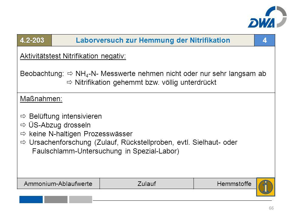 4.2-203Laborversuch zur Hemmung der Nitrifikation4 Aktivitätstest Nitrifikation negativ: Beobachtung:  NH 4 -N- Messwerte nehmen nicht oder nur sehr langsam ab  Nitrifikation gehemmt bzw.