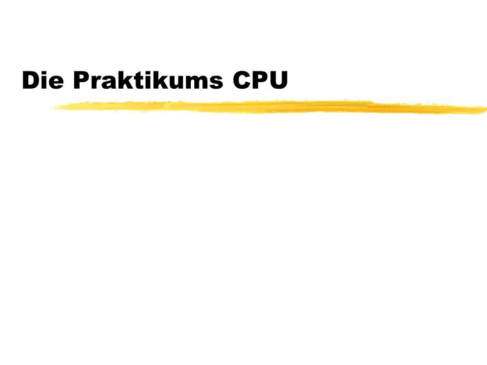 Die Praktikums CPU