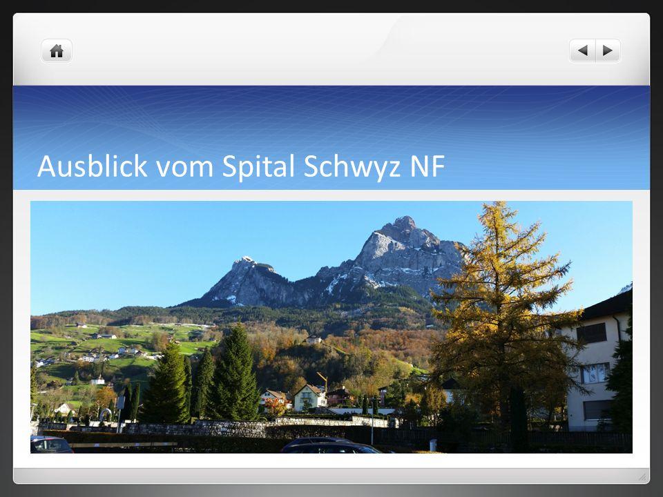 Ausblick vom Spital Schwyz NF