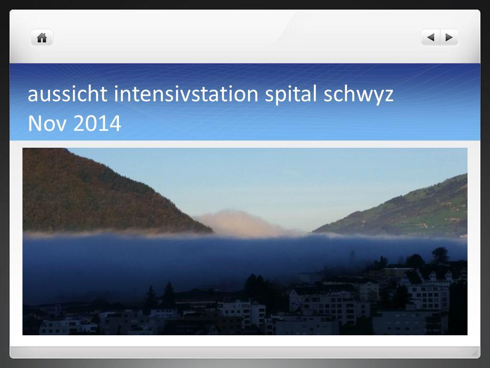 aussicht intensivstation spital schwyz Nov 2014