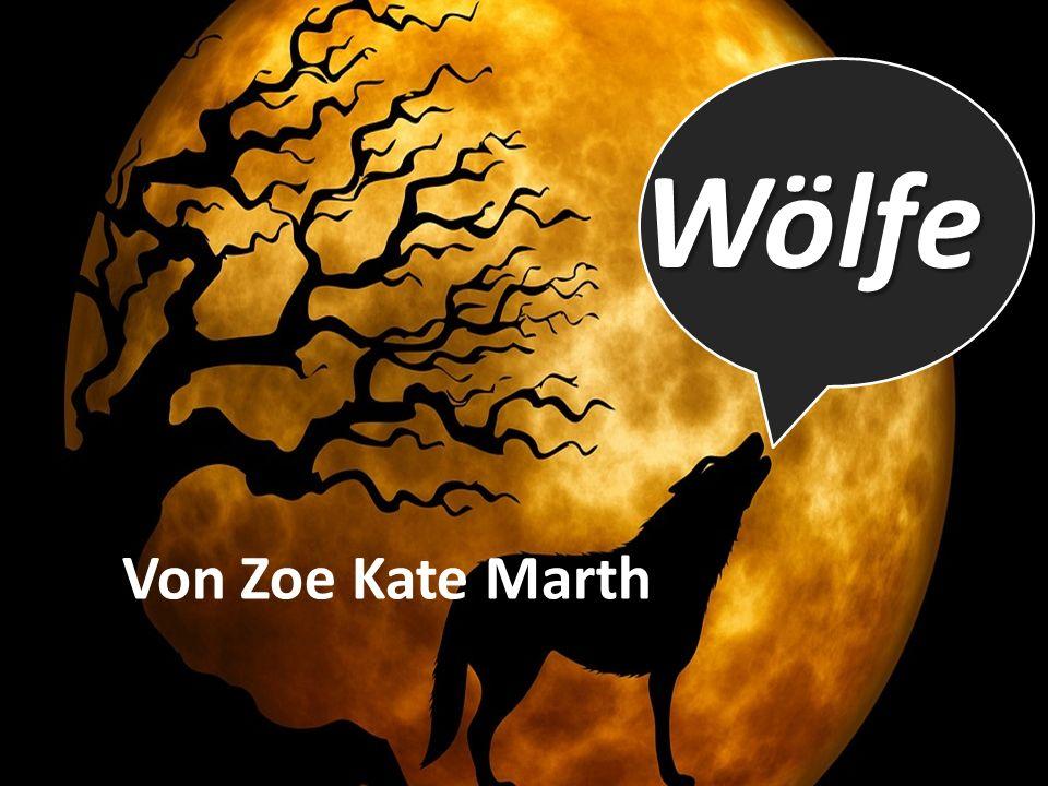 Wölfe Von Zoe Kate Marth