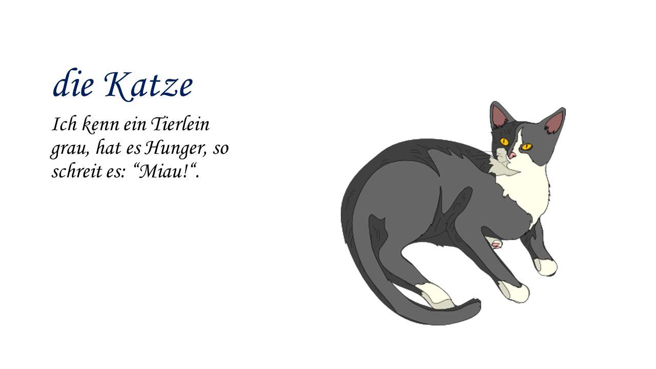 """die Katze Ich kenn ein Tierlein grau, hat es Hunger, so schreit es: """"Miau!""""."""
