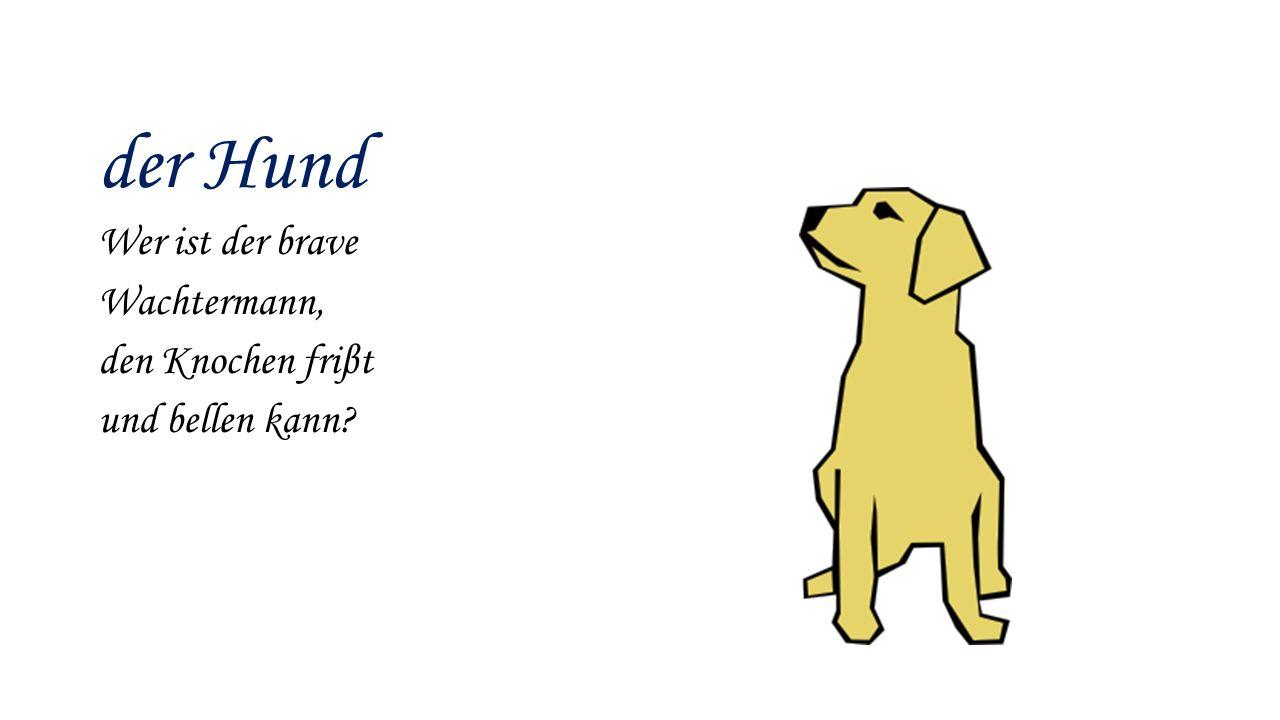 der Hund Wer ist der brave Wachtermann, den Knochen friβt und bellen kann