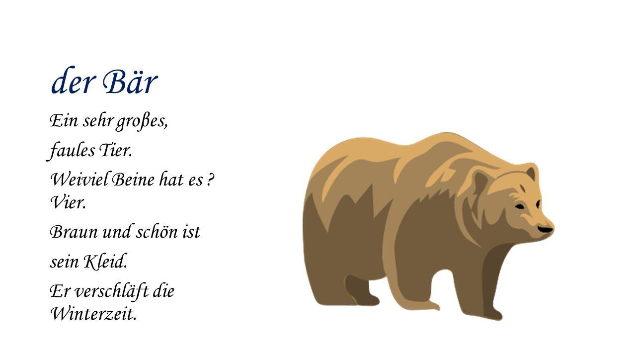 der Bär Ein sehr groβes, faules Tier. Weiviel Beine hat es ? Vier. Braun und schön ist sein Kleid. Er verschläft die Winterzeit.