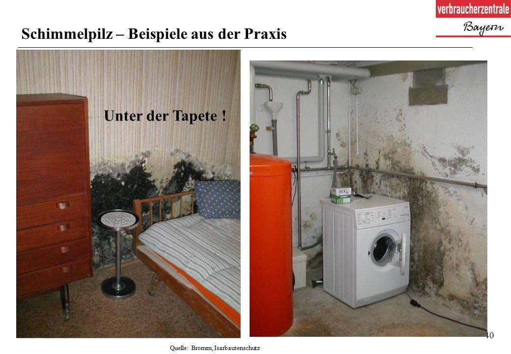 40 Schimmelpilz – Beispiele aus der Praxis Quelle: Bromm, Isarbautenschutz Unter der Tapete !