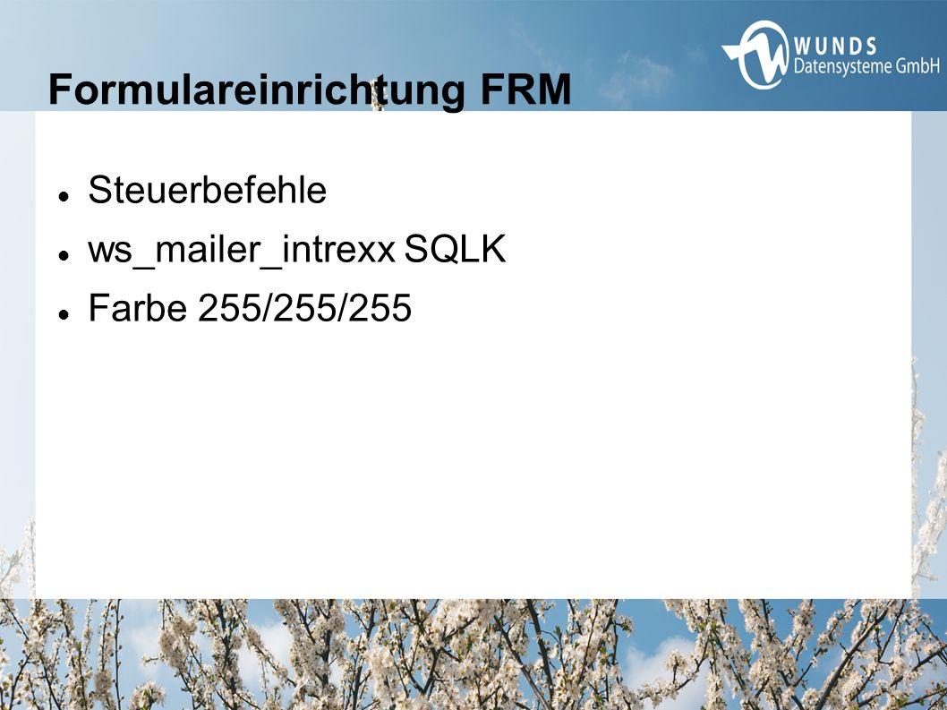Formulareinrichtung FRM Steuerbefehle ws_mailer_intrexx SQLK Farbe 255/255/255