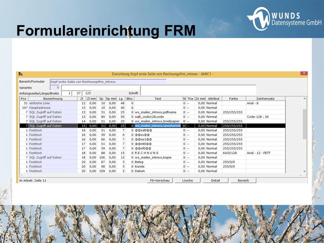 Formulareinrichtung FRM