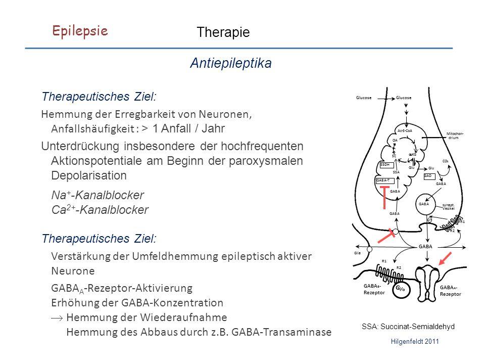 Epilepsie Hilgenfeldt 2011 Therapie Antiepileptika Therapeutisches Ziel: Hemmung der Erregbarkeit von Neuronen, Anfallshäufigkeit : > 1 Anfall / Jahr Unterdrückung insbesondere der hochfrequenten Aktionspotentiale am Beginn der paroxysmalen Depolarisation Na + -Kanalblocker Ca 2+ -Kanalblocker Therapeutisches Ziel: Verstärkung der Umfeldhemmung epileptisch aktiver Neurone GABA A -Rezeptor-Aktivierung Erhöhung der GABA-Konzentration  Hemmung der Wiederaufnahme Hemmung des Abbaus durch z.B.