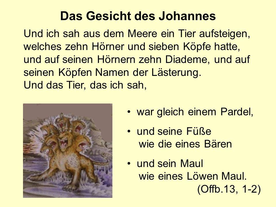 Das Gesicht des Johannes Und ich sah aus dem Meere ein Tier aufsteigen, welches zehn Hörner und sieben Köpfe hatte, und auf seinen Hörnern zehn Diadem