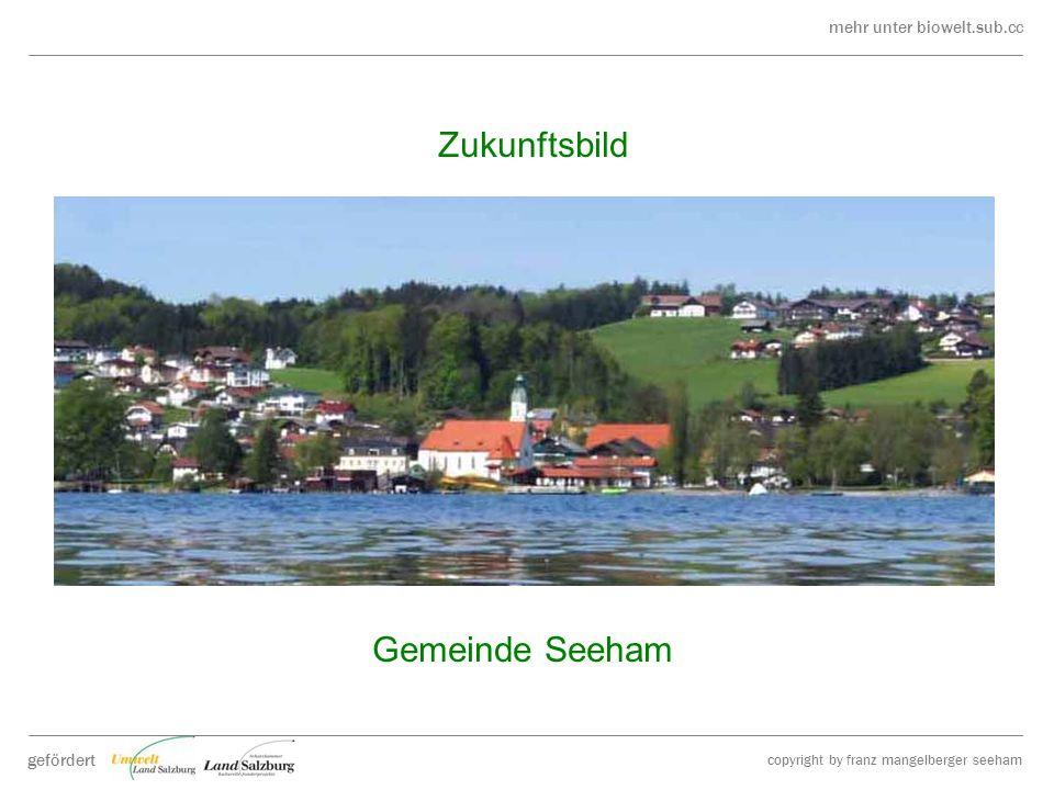 mehr unter biowelt.sub.cc gefördert copyright by franz mangelberger seeham Zukunftsbild Gemeinde Seeham