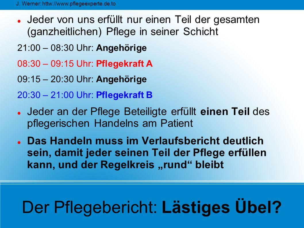 J. Werner: httw://www.pflegeexperte.de.to Der Pflegebericht: Lästiges Übel? Jeder von uns erfüllt nur einen Teil der gesamten (ganzheitlichen) Pflege