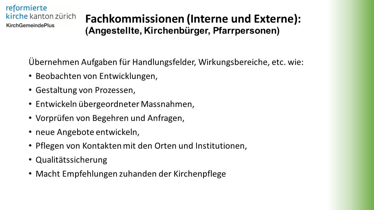 Fachkommissionen (Interne und Externe): (Angestellte, Kirchenbürger, Pfarrpersonen) Übernehmen Aufgaben für Handlungsfelder, Wirkungsbereiche, etc.